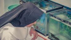 Klasztor w Patzcuaro. Naukowcy i zakonnice realizują program hodowli i ochrony salamander