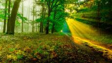Złota jesień w obiektywie Reportera 24 marcin_gibas