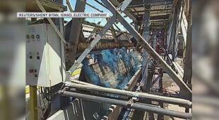 Meduzy spowodowały awarię elektrowni